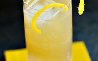 Алкогольный коктейль Бренди Бак (Brandy Buck): рецепт с фото