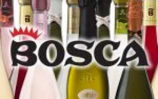 Шампанское Боско (Bosca Anniversary), виды шампанского Боско