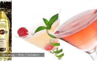 Алкогольный коктейль «Мартини Вишня» (MARTINI Cherry): рецепт с фото