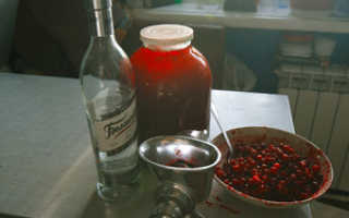 Рецепт настойки из клюквы (Клюковка)