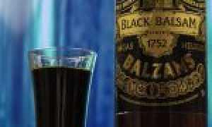 Алкогольный коктейль «Black Shooter»: рецепт с фото