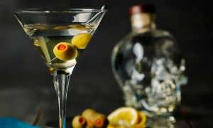 Алкогольный коктейль MARTINI FIERO & TONIC (Мартини Фиеро с тоником): рецепт с фото