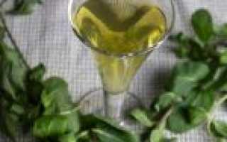Рецепт мятной настойки на водке