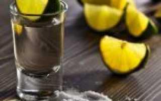 Как правильно пить текилу? Из чего пить текилу?