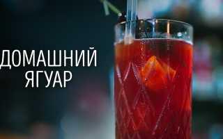 Алкогольный коктейль «Домашний Ягуар»: рецепт с фото