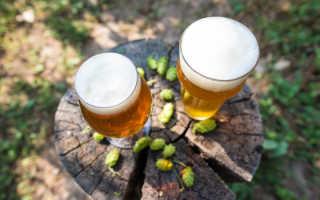 Что такое IBU в пиве?
