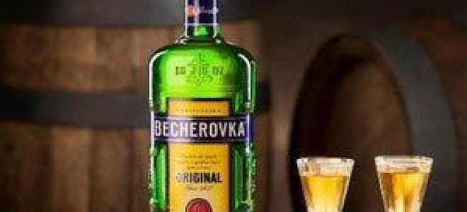 Рецепт домашнего ликёра Бехеровка (Becherovka)
